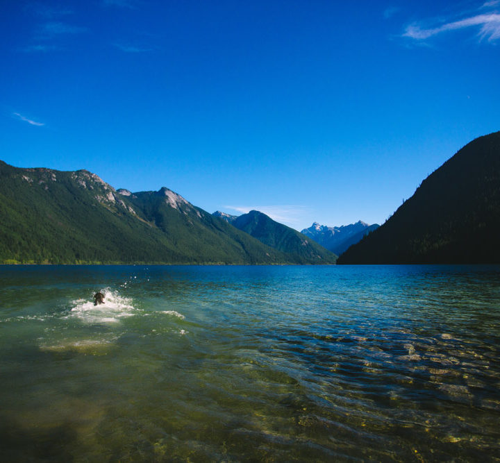 Chilliwack Lake // 2014