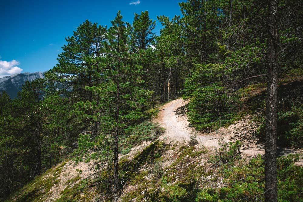 Trail at Banff National Park