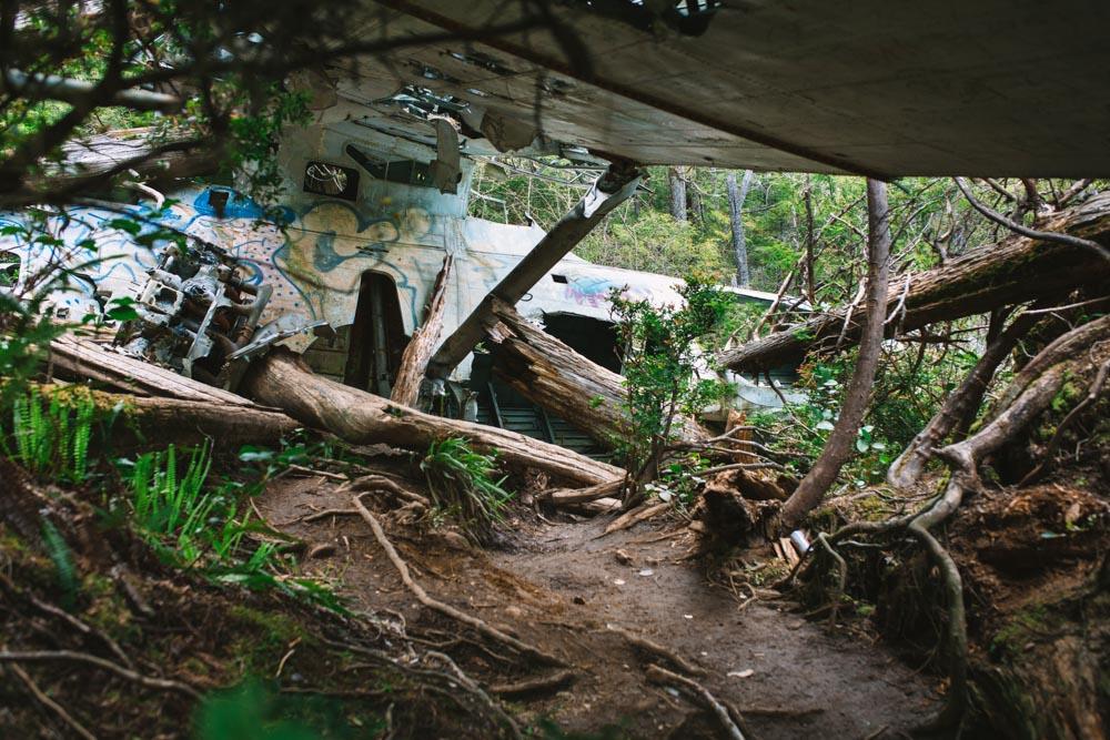 Hike to Bomber Plane Crash Tofino British Columbia
