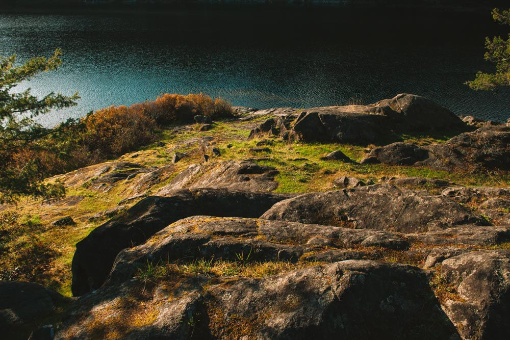 Mossy Rocks at Main Lakes Provincial Park Quadra Island