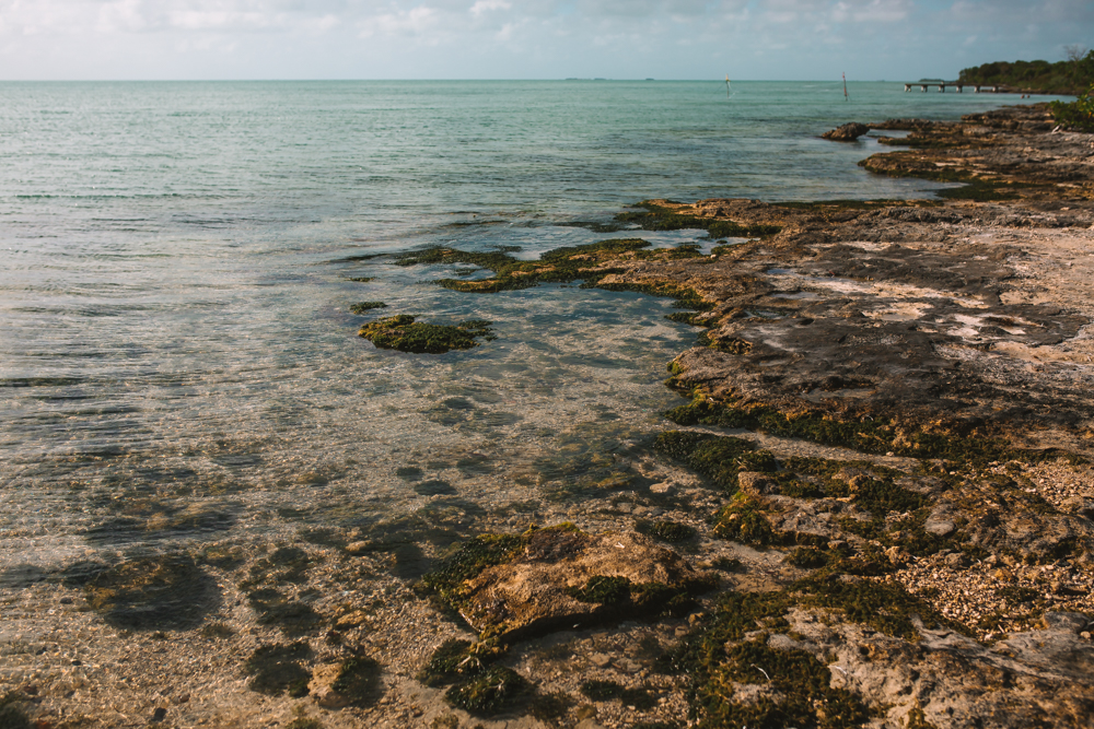 Secret Beach Ambergris Caye Belize