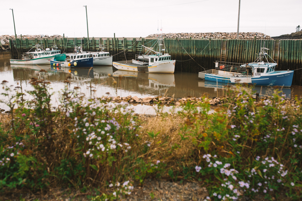 Boats in Wharf in Hampton Nova Scotia