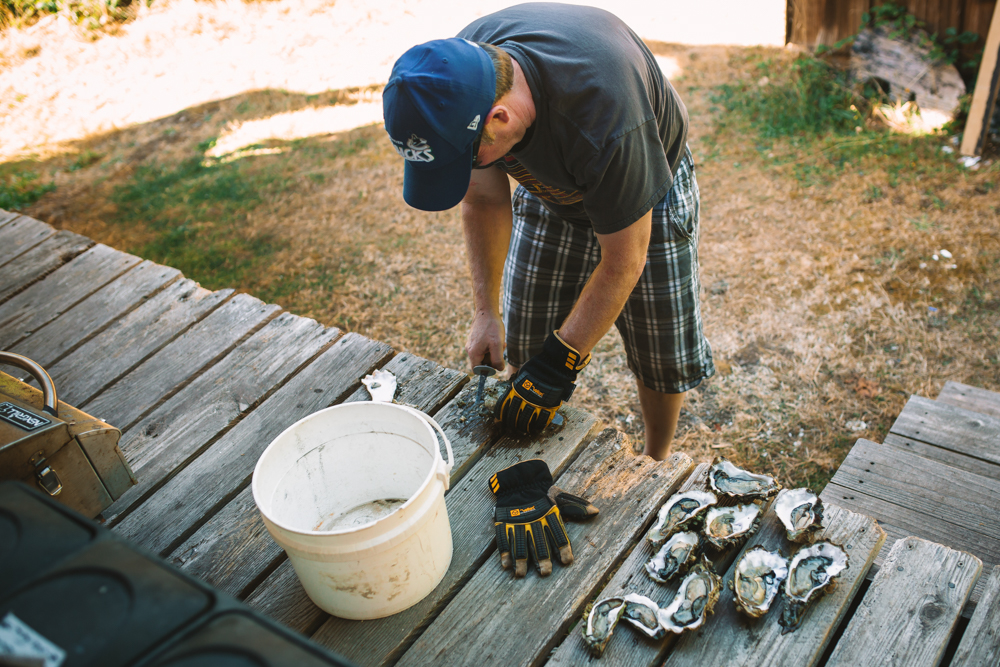 Shucking Oysters on Lasqueti Island