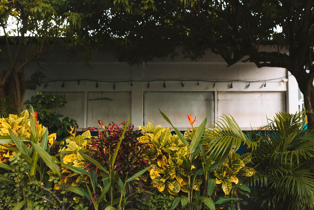Travel Photography Costa Rica