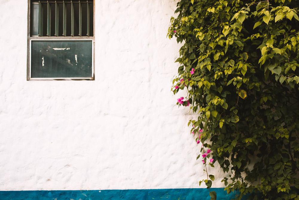 Documentary Travel Photography Costa Rica