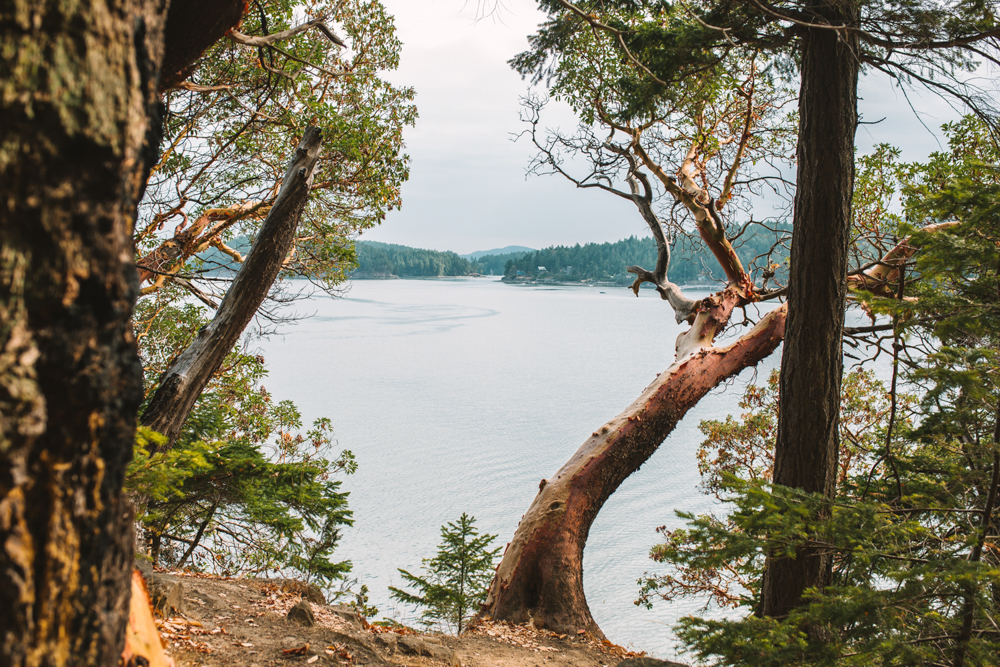 mayne island british columbia landscape photography